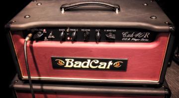 bad-cat-head-1540
