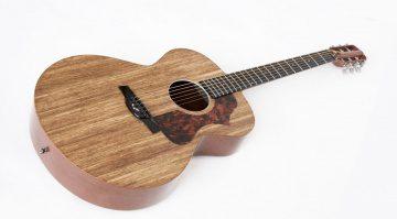 Blackbird El Capitan Akustikgitarre Komplett groß