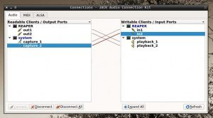 Reaper DAW Linux ARM JACK Routing