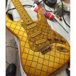 Fraser Guitars Steichholz Strat Gitarre Body Top