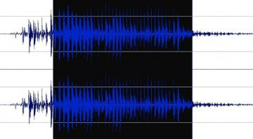 Wavosaur Waveform Timeline Nah