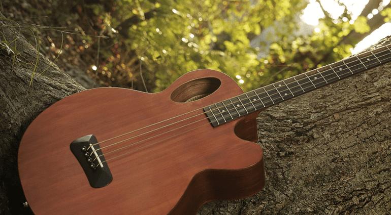 Spector Timbre Akustik Bass Natural Baum