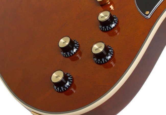 Epiphone RD Lee Malia BMTH Signature Artisan Pots