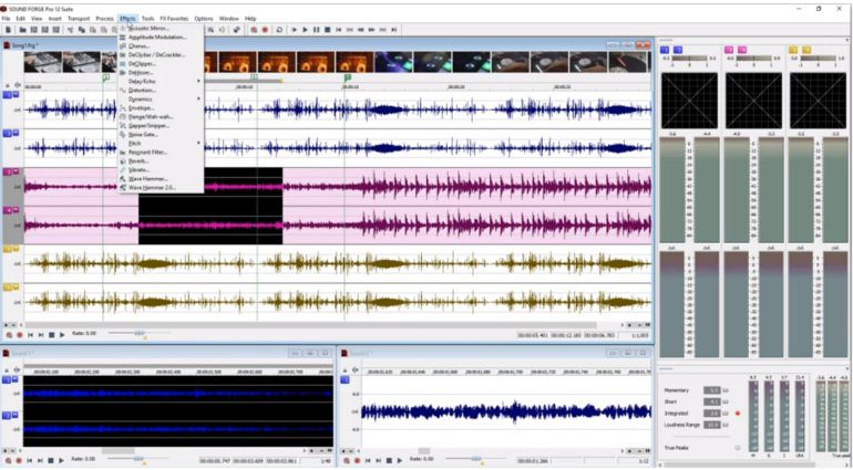 Magix Sound Forge Pro 12
