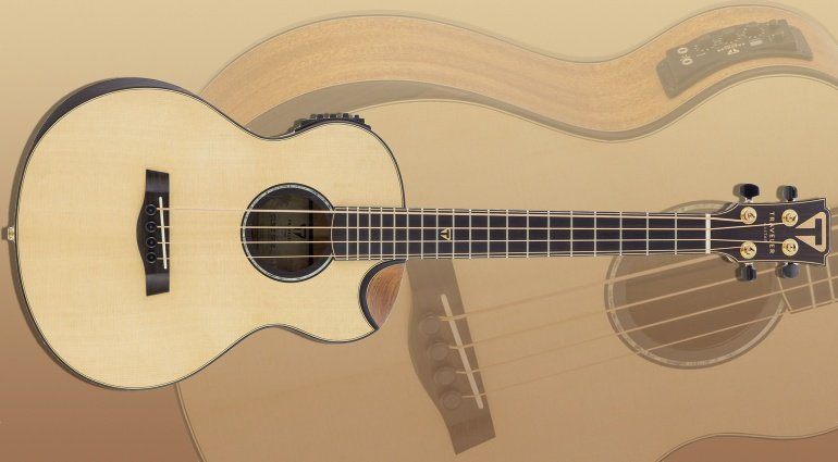 Traveler Guitar CL-3BE Acoustic Bass