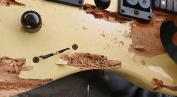 Woodworm-Infestation-found-by-Guitar-Clinic-in-Equador
