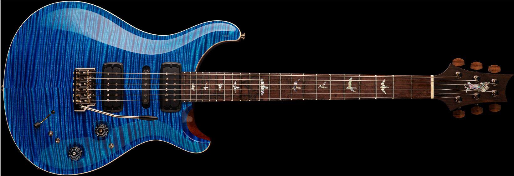 PRS modern eagle private V Stock E-gitarre komplett
