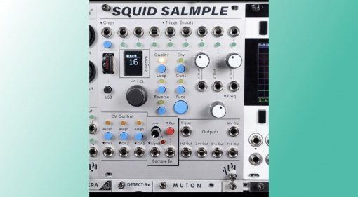 ALM Squid Salmple
