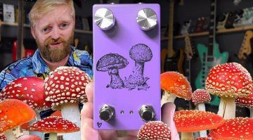 Farm Fly Agaric Phaser
