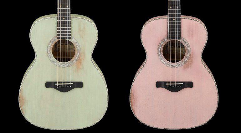 Ibanez Artwood Vintage AVC11MH Surf Green Flamingo Pink Akustik Gitarre Front