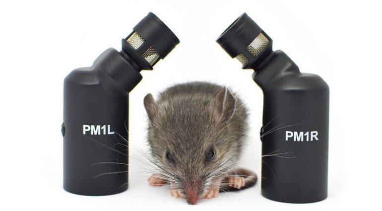 CEntrance PivotMic PM1 Maus
