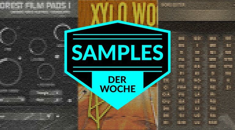 Samples der Woche: Forest Film Pads 1, Dominus Choir Pro, Xylo Wood