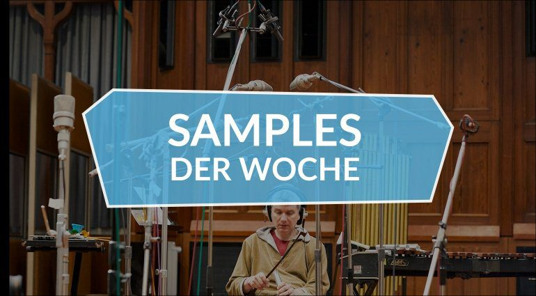 Samples der Woche: SP1200 Collection, Designer Drums 2, Swarm Percussion