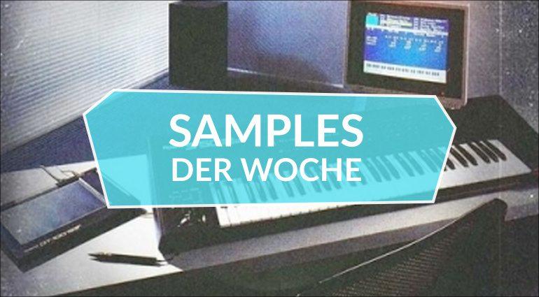 Samples der Woche: EverWave, Analogue Archival, Function Loops Label Sampler