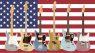 Fender American Original Neue Farben 2020