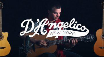 Akustikgitarren von D'Angelico