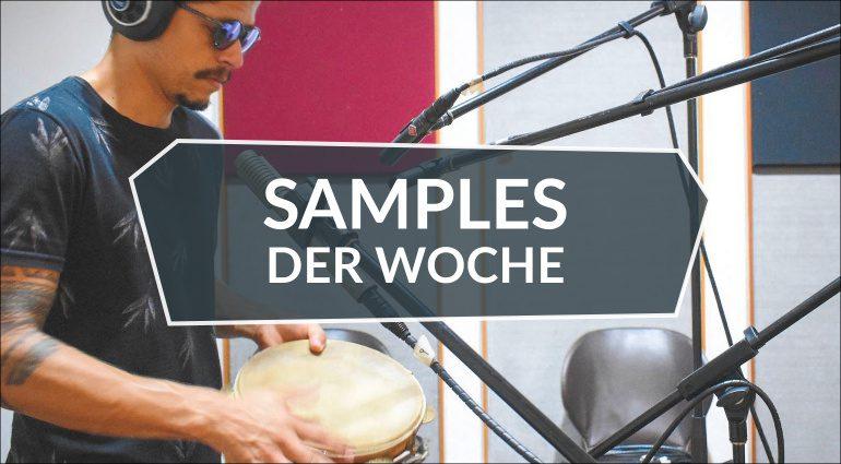 Samples der Woche: Pandeiro 2, Buffalo Drum V2 und kostenlose Pakete!