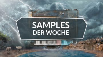 Samples der Woche: Ambition, Atmosia 2, Terry & Bells, Neuron