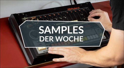 Samples der Woche: Frame Drummer, Didgeridoos, 808 From Mars und mehr