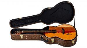 Luna Guitars Vista Eagle AE Tropical Wood Hardcase