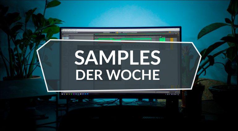 Samples der Woche: Bioscape, Origin X, 909 – TR-909 Culture, Disco 6000, World Suite 2, Free Melody Loops