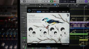 Puremagnetik Shrike: ein erweitertes Shimmer Reverb und mehr