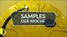 Samples der Woche: Adaptive Runs, Wildbeat, Room Piano v3 und mehr