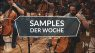 Samples der Woche: Berlin Symphonic Strings, Action Rewind Vol 1, Nick Hook SP-1200 Sample Pack