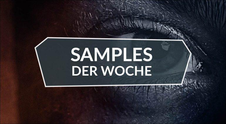 Samples der Woche: Contemporary Drama Toolkit, Mutate Organic, Analog Hip-Hop Drums