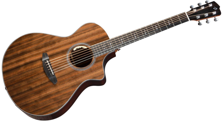 Breedlove Focus SE Mammutbaum Akustik Gitarre