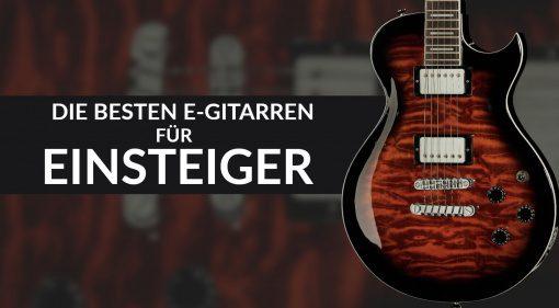 Einsteiger E-Gitarren Teaser LEs PAul Single Cut 1