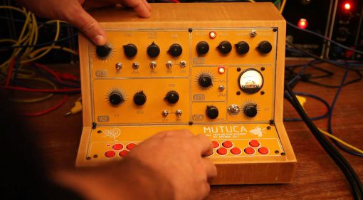 Reco-Synth Mutuca