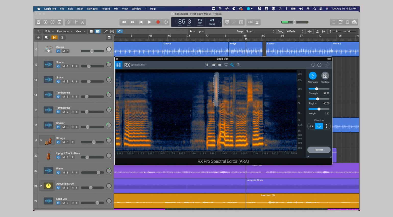 iZotope RX 9 Spectral Editor in Logic Pro